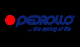 Logo-Pedrollo-1024x244